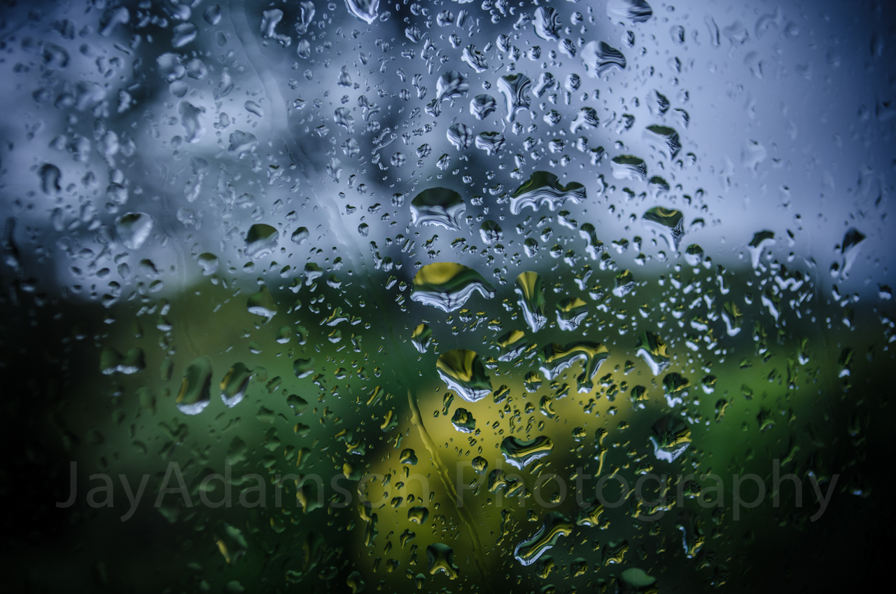 Rainy day in Spring